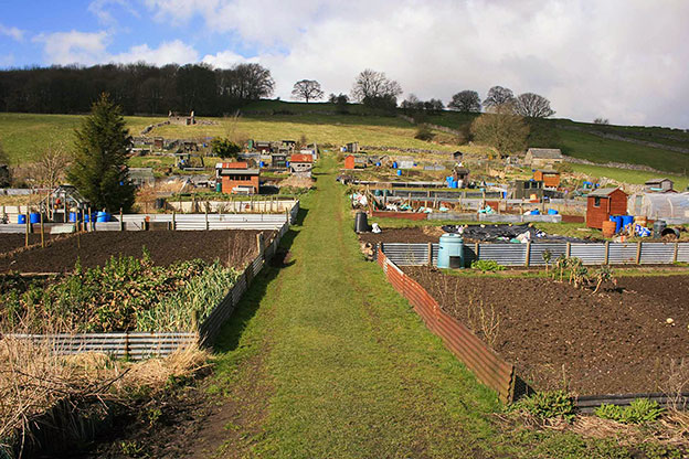 Coldwell End allotments Youlgrave