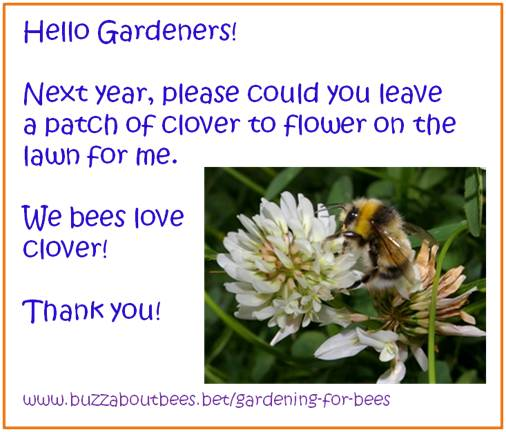 Lawn bees